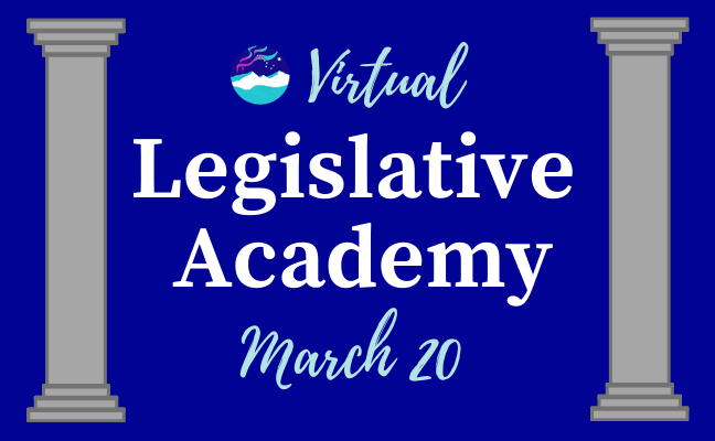 2021 Virtual Legislative Academy - Resources & Video